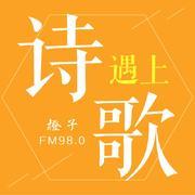 诗遇上歌-橙子980-橙子980玮玮-佚名