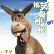 搞笑疯神榜-主持人小毛驴-主持人小毛驴-佚名
