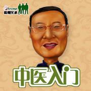 【中医入门】发现中医之美-蒜瓣兄弟-宝国叔-佚名